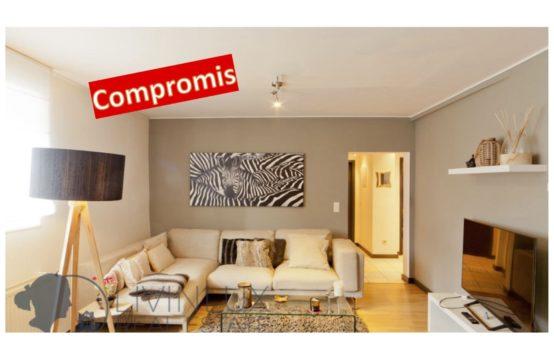 Bel appartement &#038&#x3B; studio, 3 chambres, garage